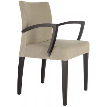 Best Value Collection Diane Light Upholstered Armchair M393B