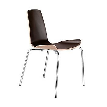Ray Dark and Light Wood Side Chair