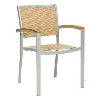 Villa Metal Frame Outdoor Chair